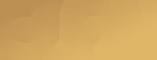 義隆纖維工業股份有限公司 Logo